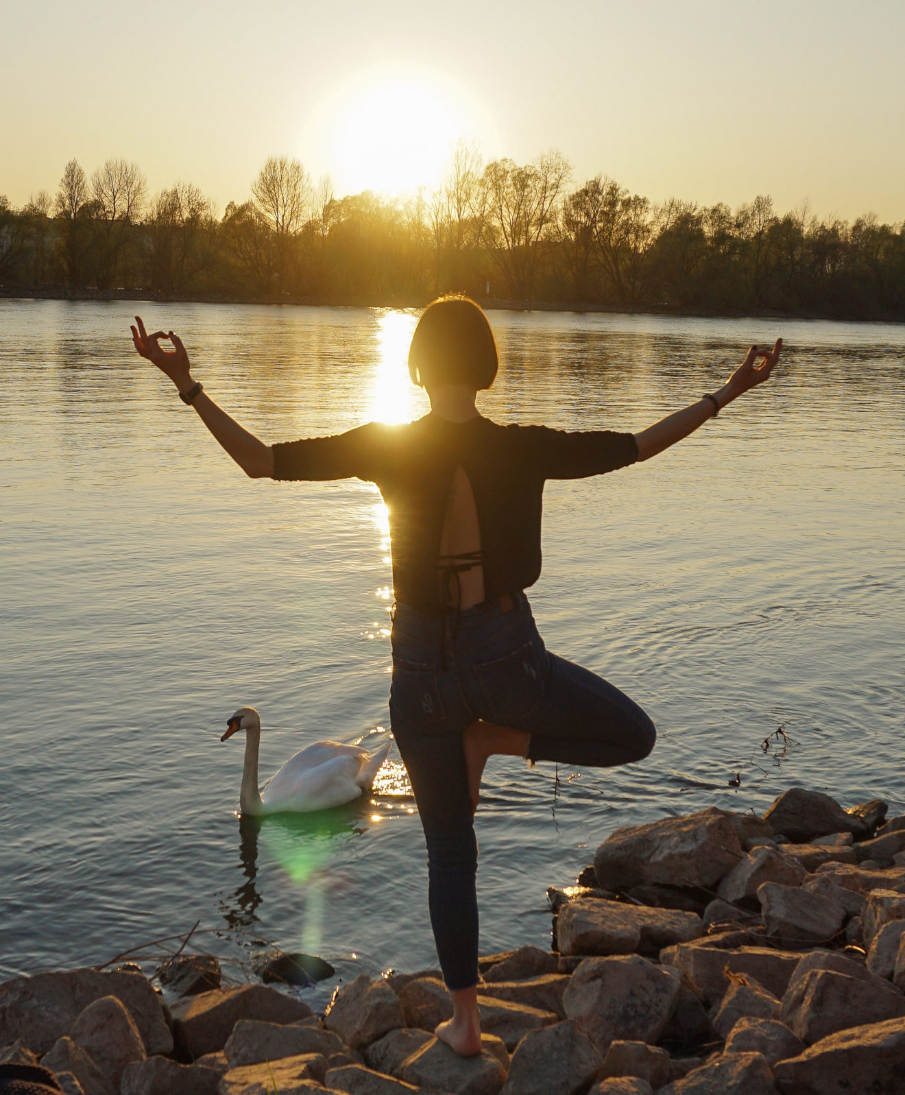 Isabelle Panther Yoga Tree Pose mit Schwan am Rhein in Mainz